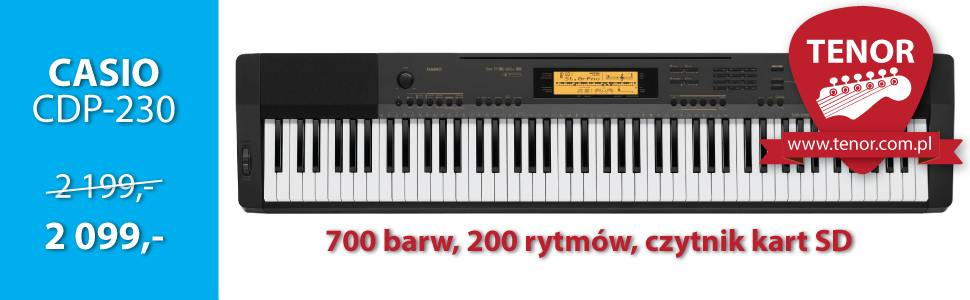 CDP-230 Casio piano
